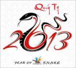 Quy Ty 2013